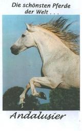 Die schönsten Pferde der Welt - ANDALUSIER
