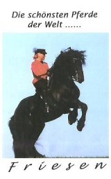 Die schönsten Pferde der Welt - FRIESEN