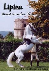 Lipica - Heimat der weißen Pferde